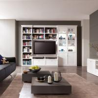 Anspruchsvolle Bibliotheken nach Maß in den verschiedensten Stilrichtungen, allen Maßen und top geplant - Einbauschränke bei Kieppe als klassische Bibliothek aber modern