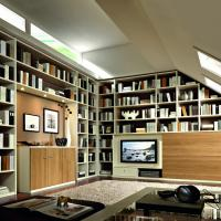 Einbauschrank nach Maß - Dachschräge - als Bibliothek und TV-Wand genutz by Linea Conzept