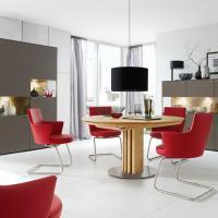 Modernes Ess - oder Speisezimmer mit Schwingstühlen
