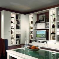 Individuelle Wohnwand - Kombination - Stauraumsäule und Bibliothem