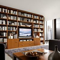 Anspruchsvolle Bibliotheken nach Maß in den verschiedensten Stilrichtungen, allen Maßen und top geplant - Einbauschränke bei Kieppe als moderne Bibliothek mit TV-Teil